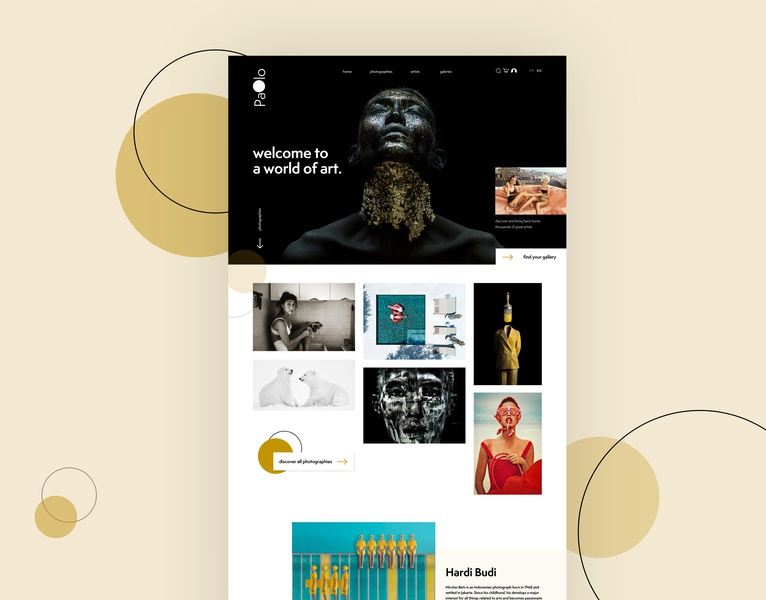 Paolo gallery photography pattern illustration graphic art web ui webdesign design