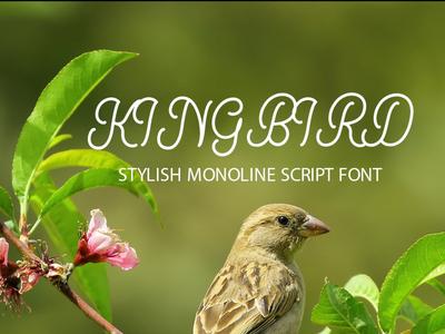 Kingbirds Monoline Script Font Free