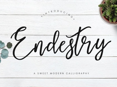 Endestry is a free sweet font Free