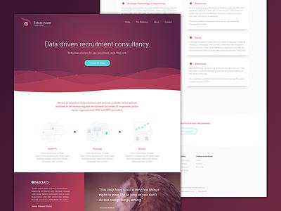 Tobias Adam Consulting Website Design consultancy data web design website