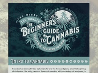 Guide To Canni