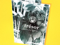trésor · logo development book