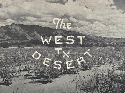 West TX Desert typography desert texas graphic design advertising branding