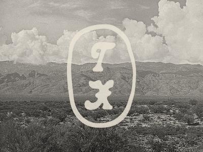 TX Bug branding graphic design austin texas logo