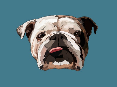 Dooley the Dog handsome bark woof english bulldog cute ears tongue illustration brindle bulldog dog