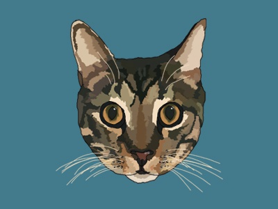 Tora the cat purr illustration color handsome attitude ears whisker whiskers eyes tiger meow cat