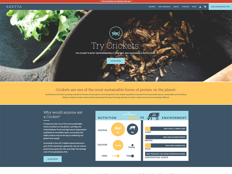 Aketta.com Website responsive food crickets design website