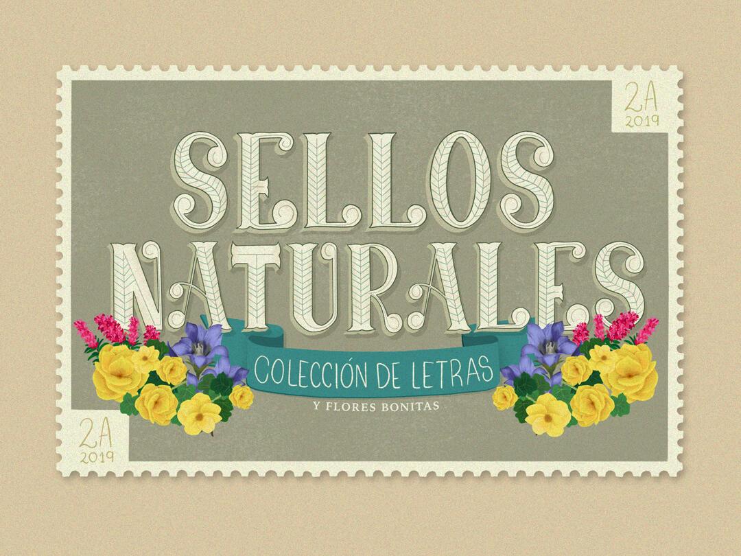 Sellos Naturales Colección De Letras Y Flores Bonitas By