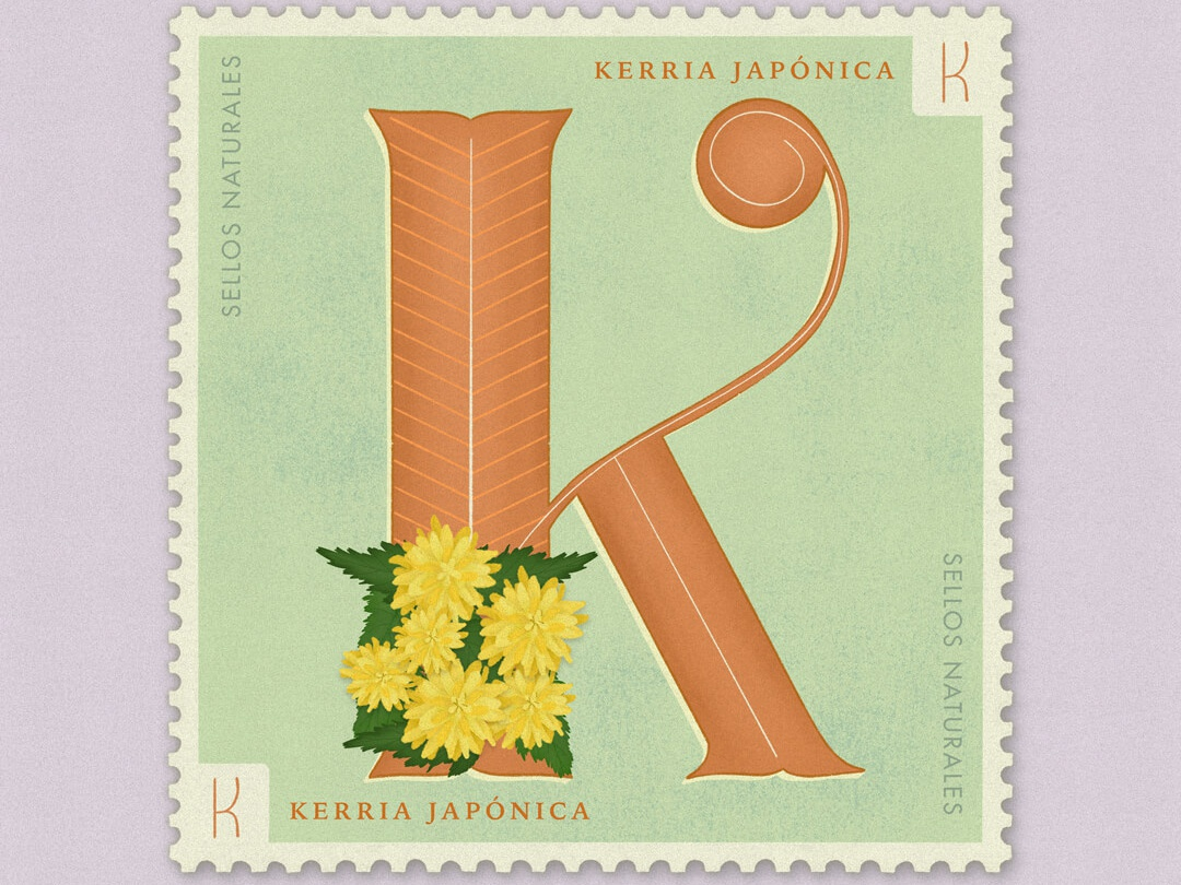 Letter K · Kerria Japonica · #36daysoftype #SellosNaturales old stamp vintage art vintage stamp stamped flower clipart botanical art hand lettering lettering capital letters letter k flowers illustration flowers procreate adobe 36 days of type lettering 36 days of type