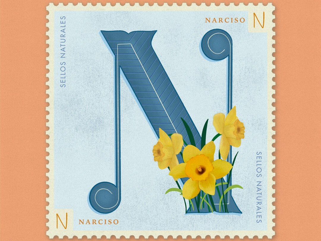 Letter N · Narciso · #36daysoftype #SellosNaturales sellos naturales natural stam stamps old stamp vintage art vintage stamp adobe women in illustration flowers illustration natural orange daffodil narciso lettering animation procreate lettering 36 days of type 36 days of type lettering