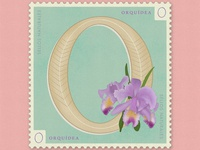 Letter O · Orquídea · #36daysoftype #SellosNaturales