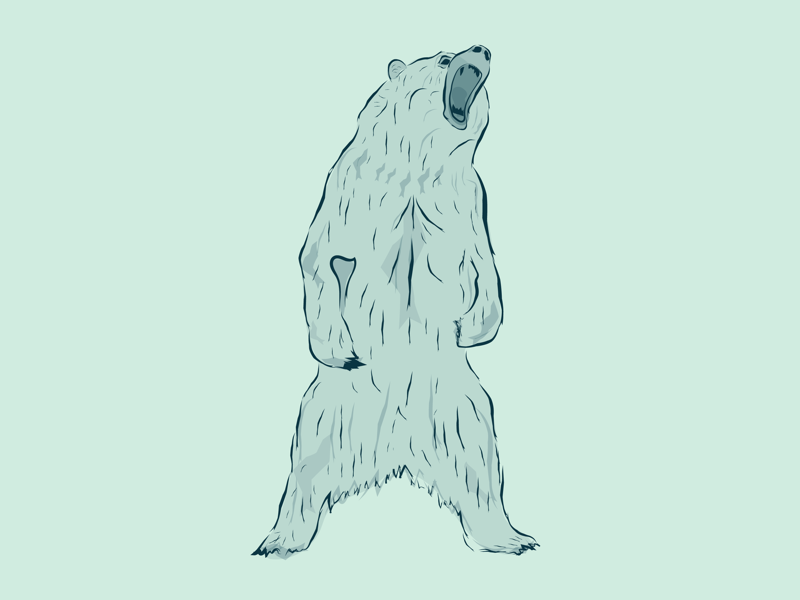 Bear! design bear illustration animal
