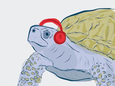 Turtle Beats