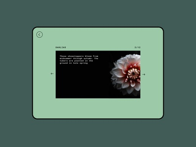 072  #DailyUI Image Slider slider gardening flowers floral green graphicdesign digitaldesign uiux dailyui072 image slider design ui design dailyuichallenge dailyui ui