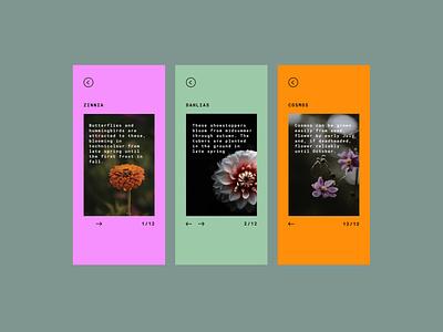 085  #DailyUI Pagination event website flowers gardening info cards pagination ux ui design design dailyuichallenge ui dailyui
