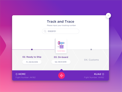 Track and Trace logistics plane airport tracking delivery web ux design ui