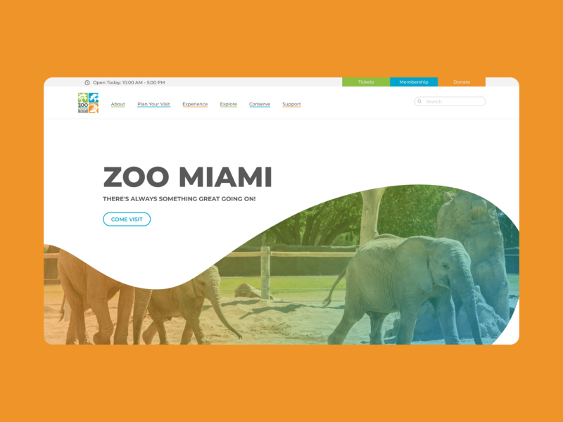 Daily UI - 003 : Landing Page elephants elephant miami front end web design landingpage landing blue green orange zoo branding vector ui dailyui design ux design uiux ui design daily ui