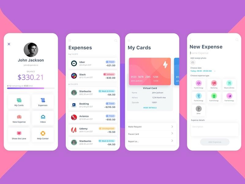 Spending Control App app ux mobile design mockup app design design ui design ui