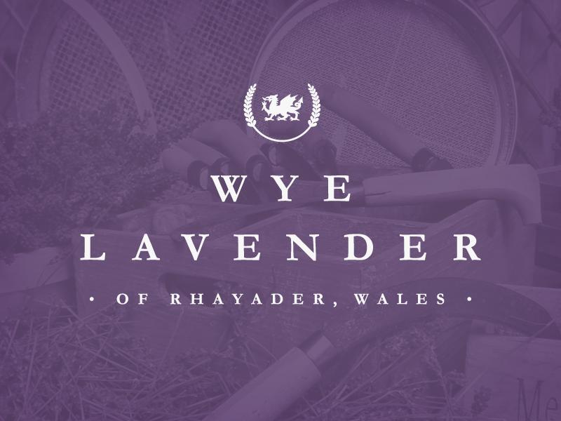 Wye Lavender purple wye lavender wales dragon branding website