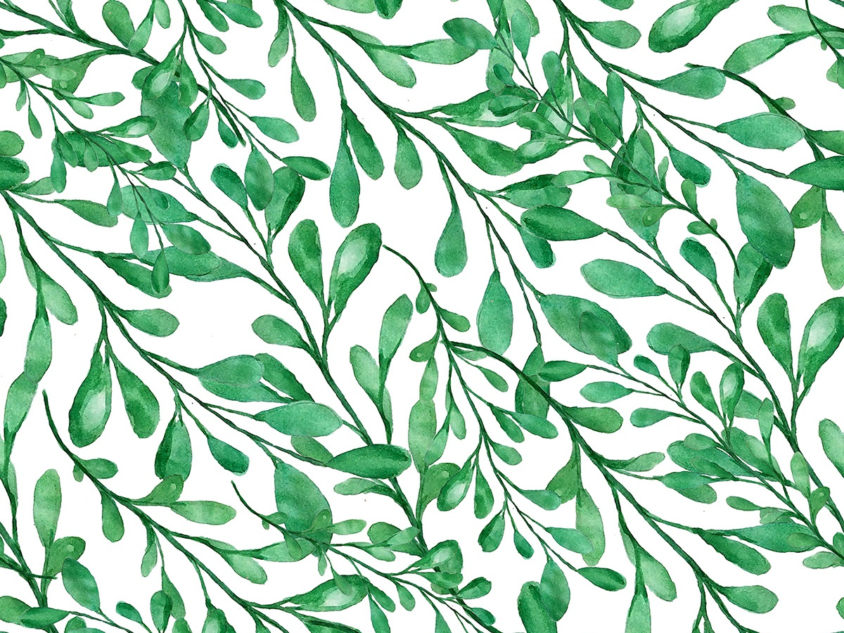 Seamless watercolor branches pattern watercolour watercolors paint graphic pattern watercolor illustration watercolor painting leaves branches surface pattern surface design fabric pattern fabric seamless seamless pattern seamlesspattern watercolor art watercolor