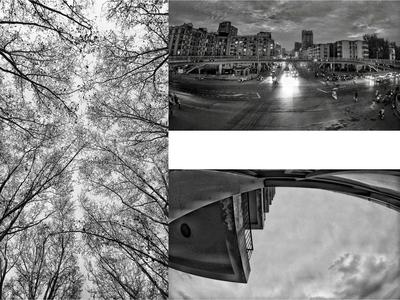 Black-and-white city