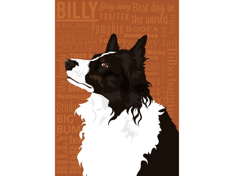 Billy Boy farmer farming sheep sheepdog border collie dog dog illustration typography branding adobe photoshop adobe illustrator vector illustration flat drawing digital illustration digital art design