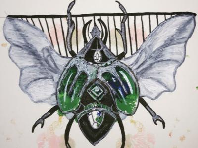 Sketch of a bug