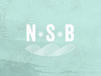 NSB Promo