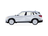BMW X1 Polygon
