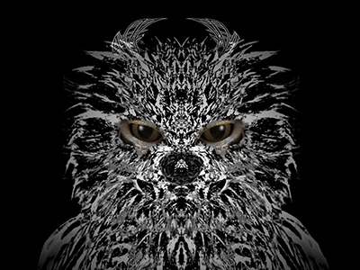 DonutNose CelticEared Frogmouth creature p52 illustration creature monster graphicdesign instacool art design characterdesign winteriscoming blackandwhite