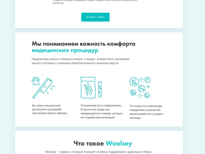 Icons. Landing Page. Woolsey
