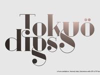 TOKYO DIGS Font Serif 6 in 1