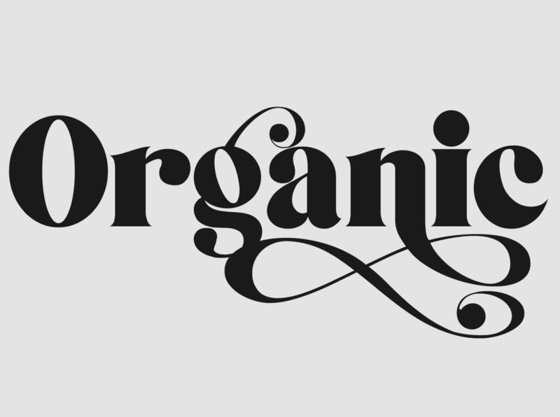 Monolog - Serif Font