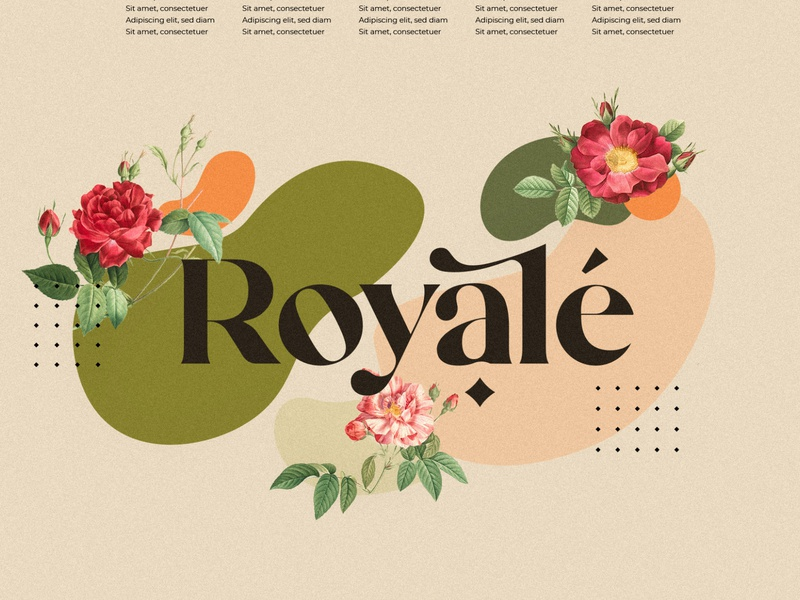 Mikela - Three Gorgeous Typefaces typography sans serif font handwriting handwritten calligraphy fonts logo fonts collection font design serif fonts serif font sans serif elegant fonts serif modern fonts branding logo fonts design simple roman fonts script fonts