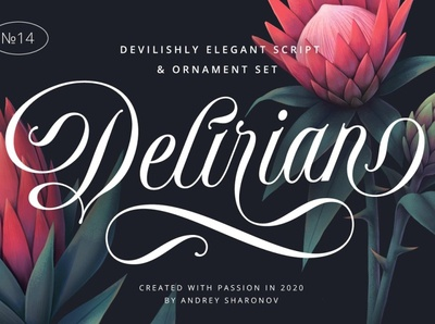 Delirian Script & Ornaments calligraphy wedding beautiful invitation romantic wedding fonts font design fonts collection script lettering lettering typeface typography calligraphy font luxury fonts modern fonts script fonts script font ornaments ornament script