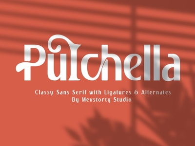 Pulchella Bold Serif Font handwriting fonts handwritten font calligraphy wedding fonts modern fonts elegant fonts font design fonts collection bold fonts design luxury font stylish sans serif font sans serif serif serif fonts serif font bold serif font bold serif bold font