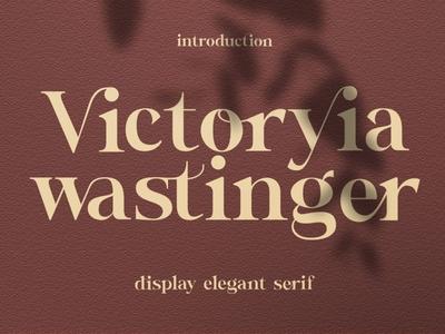 Wastinger Display calligraphy ligature fonts ligature elegant font font family design sans serif font branding modern fonts elegant fonts serif fonts fonts collection font design fonts sans serif serif font serif elegant font display font
