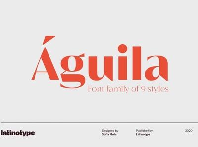 Águila typography art editorial design shape curve character professional logo lettering typography design serif branding modern fonts elegant fonts serif fonts font design fonts collection serif font sans serif font sans serif