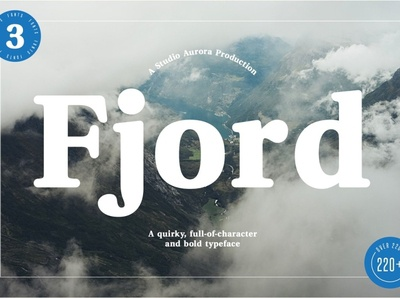 Fjord - Soft Fat Serif Font bold web design website typeface lettering design branding modern fonts elegant fonts font design fonts collection sans serif typeface sans serif fonts serif typeface sans serif font sans serif serif fonts serif font serif soft fat