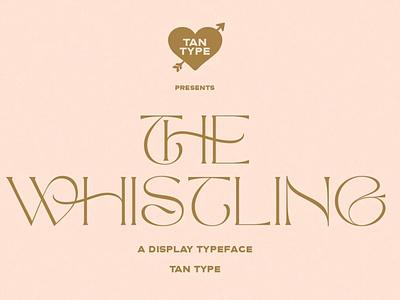 The Whistling - Display Typeface modern calligraphy calligraphy modern minimal branding elegant fonts serif font sans serif serif fonts font design fonts collection display font professional design classy fonts fonts font typeface display typeface display
