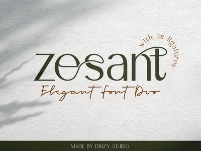 Zesant - Sans Serif Font Duo
