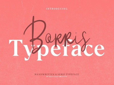 Borris Font Duo - Free Sans