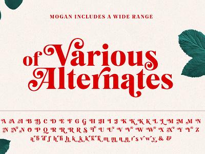 Mogan Font + Extras font fonts typography typeface script fonts modern fonts elegant fonts stylish fonts luxury fonts calligraphy fonts modern calligraphy beautiful serif fonts curved bold fonts font design fonts collection font family logo fonts lettering fonts