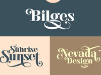 Bilges - Curved Serif Font