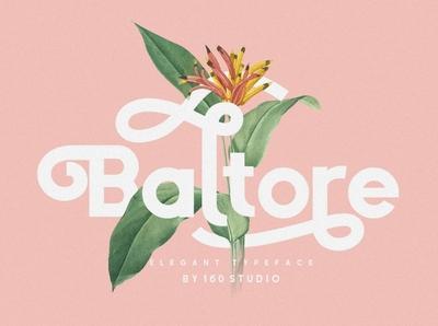 Baltore - Sans Serif