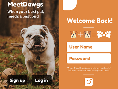 MeetDawgs - sign up design ux writing log in sign in