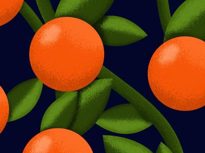 Fruit Pattern Exploratiion icon iconic illustration illustrator texture leaves orange pattern fruit vect