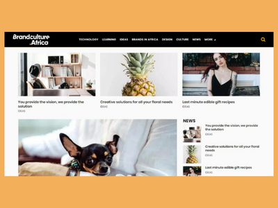 Brand Culture Africa live website web design ui design wordpress photoshop