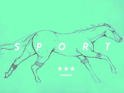 Sport horse1