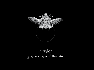 Personal Logo for Carolyn Taylor design logodesign freelancer illustrator graphic designer bugs illustration art illustration graphic design branding logo